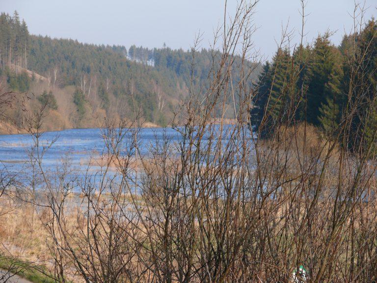 Harz 4 und 5. 2007 038