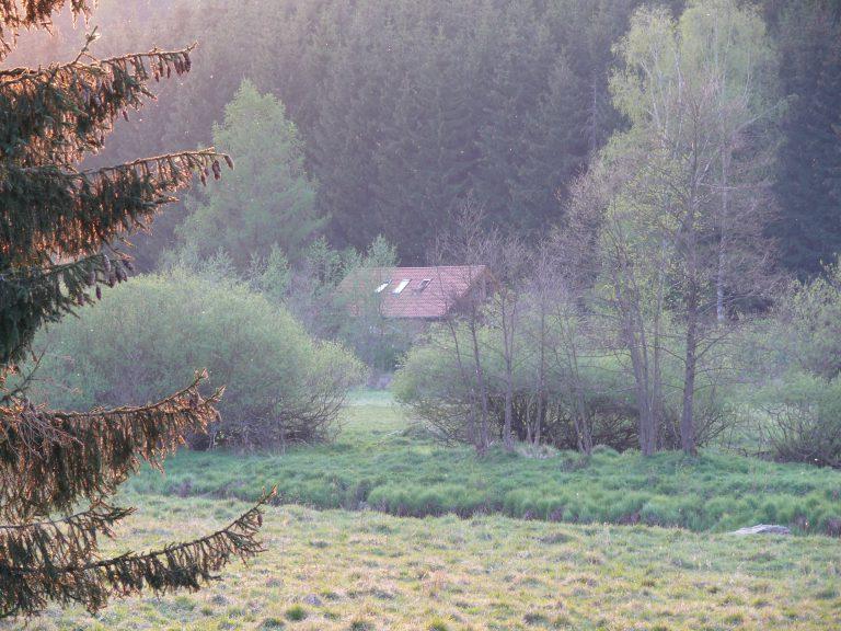 Harz 4 und 5. 2007 092