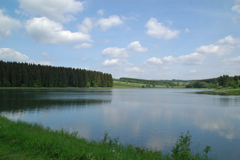 Flickr/cordyph, Titel/Title: Harzer Hexenstieg Etappe 1, Lizenz: CC BY-SA 2.0