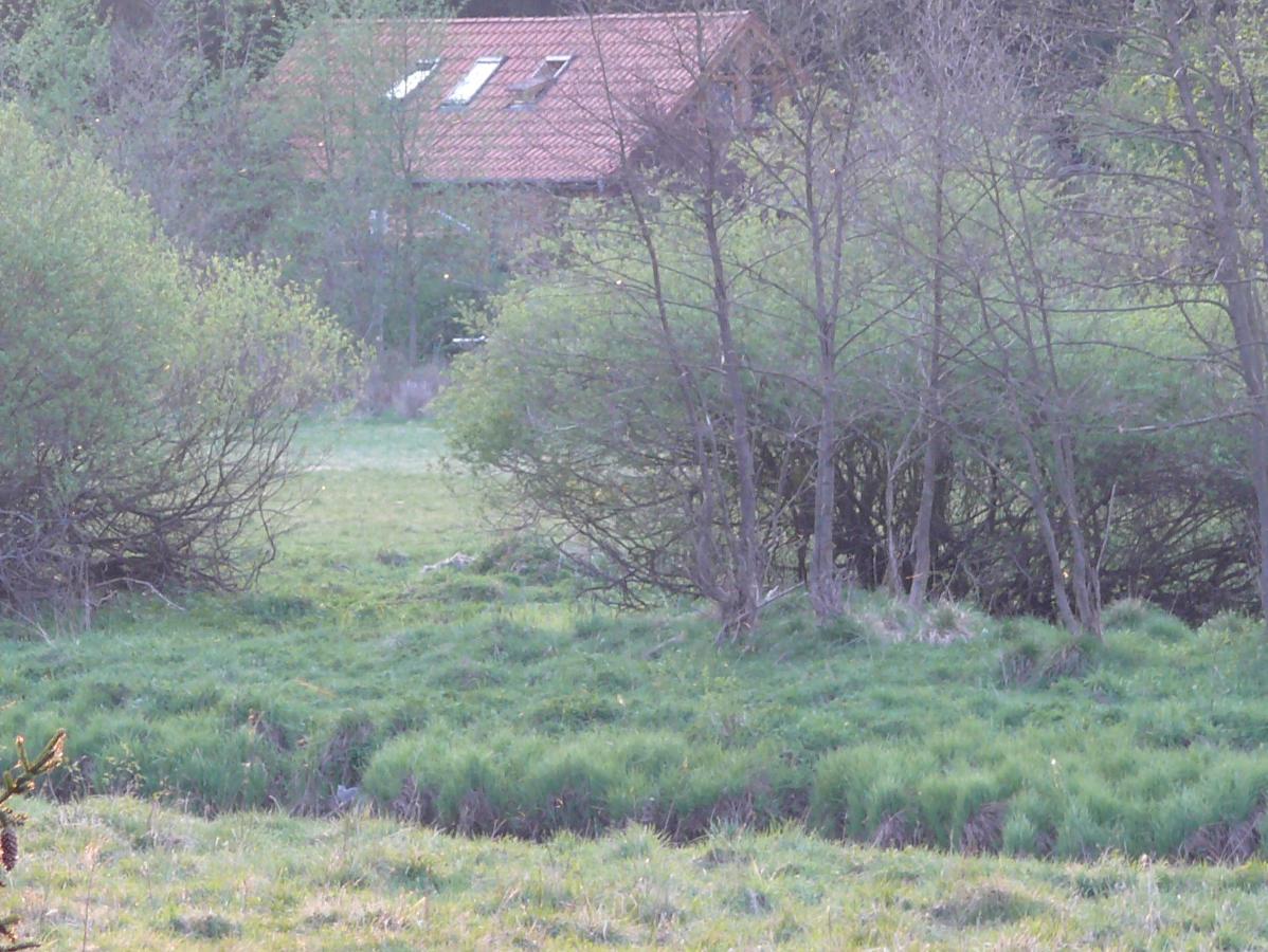 waldhaus005