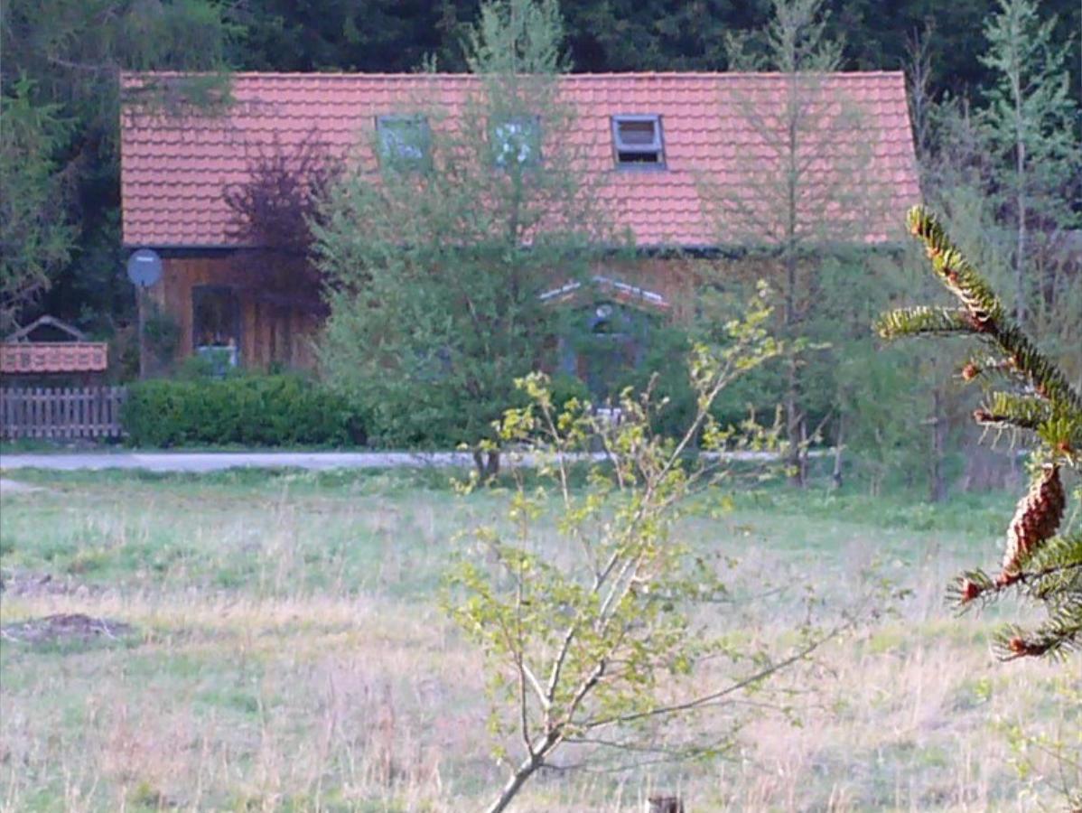 waldhaus008